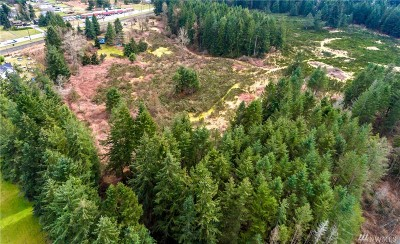 Marysville Residential Lots & Land For Sale: 11200 Hwy 99