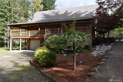 Mason County Single Family Home For Sale: 71 E Blackberry Lane
