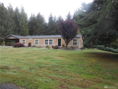 Chehalis Single Family Home For Sale: 137 Cherry Lane