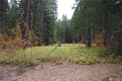 Mazama Residential Lots & Land For Sale: 19 Davelaar Dr