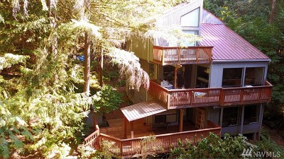 Issaquah Single Family Home For Sale: 25425 SE Tiger Mountain Rd