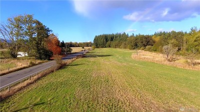 Residential Lots & Land For Sale: 133rd Ave SW