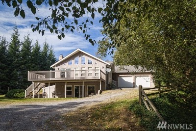 Sumas Single Family Home For Sale: 9697 Crape Rd