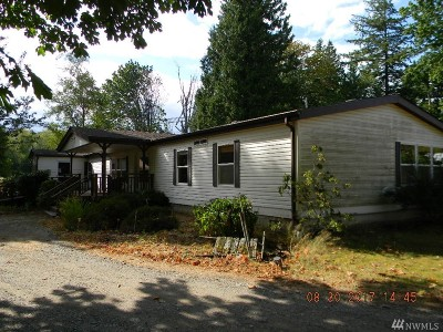 Blaine Single Family Home For Sale: 3599 McGee Rd