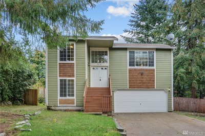 Gig Harbor Single Family Home For Sale: 9018 144th St Ct NW