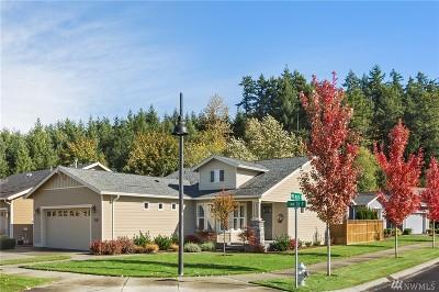 Bonney Lake Single Family Home For Sale: 19206 144th St E
