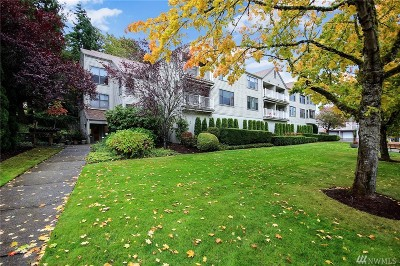 Issaquah Condo/Townhouse For Sale: 4152 Providence Point Dr SE #208