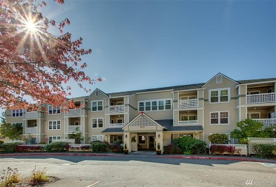 Issaquah Condo/Townhouse For Sale: 4133 224th Lane SE #201