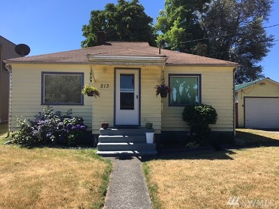 Single Family Home For Sale: 213 Gerth St SW