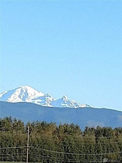 Lynden Residential Lots & Land For Sale: 303 Judson