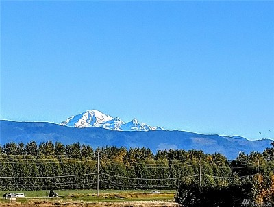 Lynden Residential Lots & Land For Sale: 303 & 409 Judson
