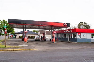 Mason County Commercial For Sale: 2235 Olympic Hwy N