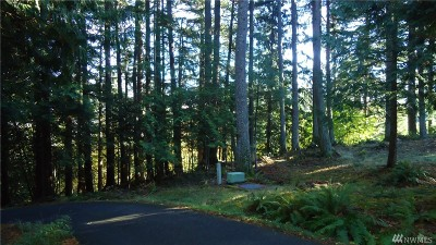 Residential Lots & Land For Sale: 1 Thunder Peak Way