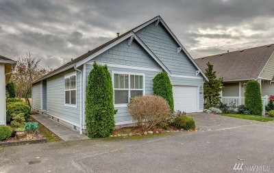 Ferndale Single Family Home For Sale: 5608 Correll Dr