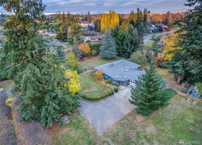 Ferndale Single Family Home For Sale: 1157 W Axton Rd