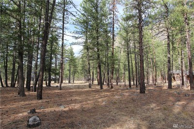 Mazama Residential Lots & Land For Sale: 33 Last Chance Rd