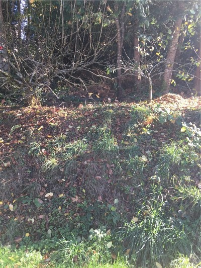 Residential Lots & Land For Sale: 21890 Apollo Dr NE