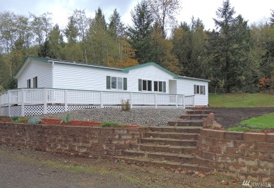 Chehalis Single Family Home For Sale: 360 Hewitt Rd