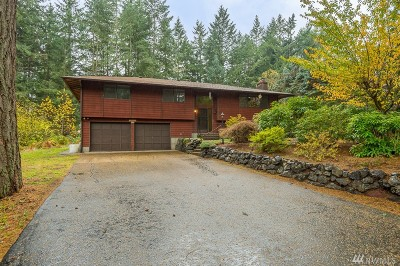 Gig Harbor Single Family Home For Sale: 9102 149th St NW