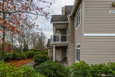 Bellingham Condo/Townhouse For Sale: 4579 El Dorado Wy #108