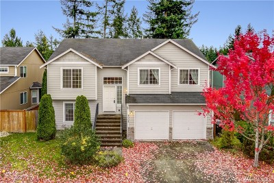 Spanaway Single Family Home For Sale: 8008 207th St Ct E