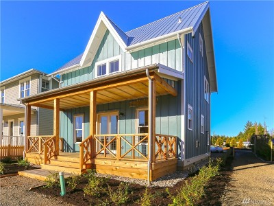 Grays Harbor County Single Family Home For Sale: 44 Horseshoe Lane