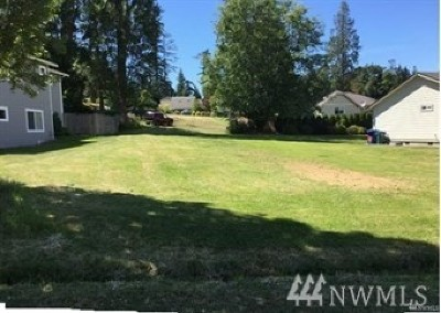 Blaine Residential Lots & Land For Sale: 9999 Kayak Wy