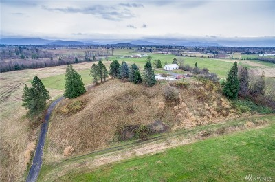 Whatcom County Residential Lots & Land For Sale: 5550 Aldrich Rd