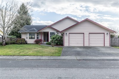 Sedro Woolley Single Family Home For Sale: 725 Cultus Mountain Dr