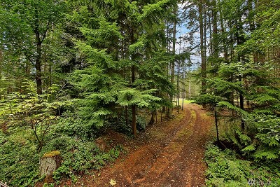 Langley Residential Lots & Land Sold: 3175 Andreason Road