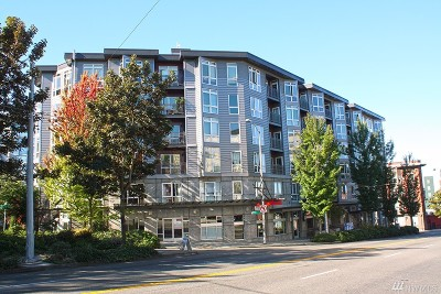 Rental For Rent: 159 Denny Wy #313