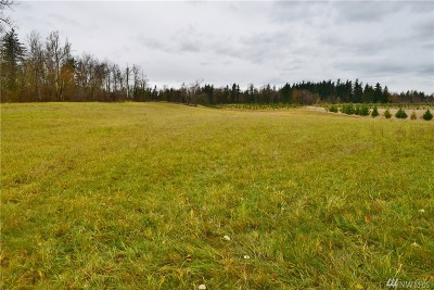 Everson Residential Lots & Land For Sale: 2748 Badger Rd