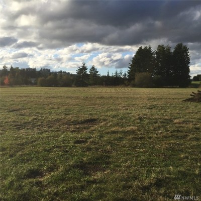 Residential Lots & Land For Sale: 202 Pleasant Valley Rd