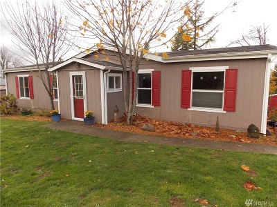 Tenino Single Family Home For Sale: 3744 SE Blumauer Rd SE