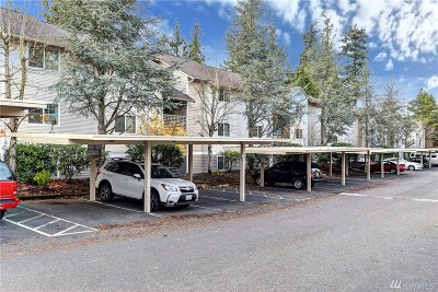 Everett Condo/Townhouse For Sale: 1009 112th St SE #A206