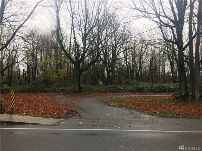 Sumas WA Residential Lots & Land For Sale: $299,500