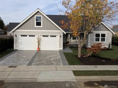 Lynden Single Family Home For Sale: 2004 Mercedes Dr