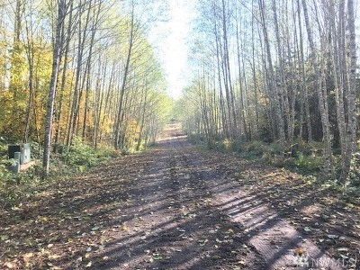 Residential Lots & Land For Sale: 162 Woodsy Lane