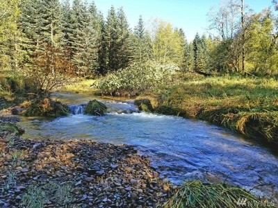 Residential Lots & Land For Sale: 175 Woodsy Lane