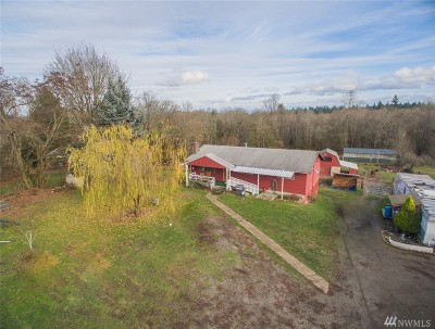 Puyallup Single Family Home For Sale: 2005 S Fruitland