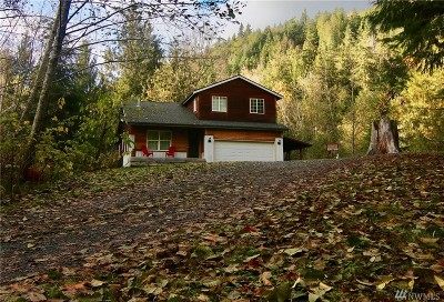Whatcom County Single Family Home For Sale: 2363 Mosquito Lake Rd