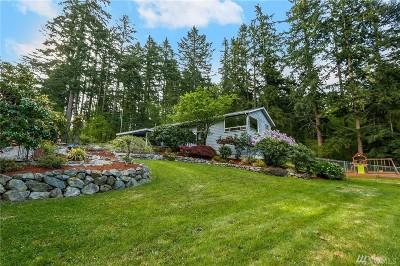 Auburn Single Family Home Contingent: 3413 S 356th St