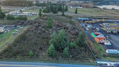 Residential Lots & Land For Sale: Elderberry St SW