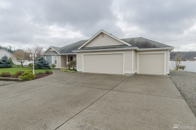 Chehalis Single Family Home For Sale: 135 Newaukum Village Dr