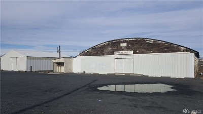Soap Lake Commercial For Sale: 19298 Division Rd NW