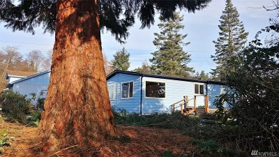 Single Family Home For Sale: 504 Bush Point Rd