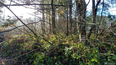 Maple Falls WA Residential Lots & Land For Sale: $25,000