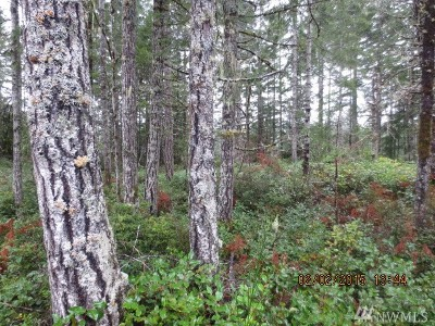 Mason County Residential Lots & Land Pending Feasibility: 3 W California Rd