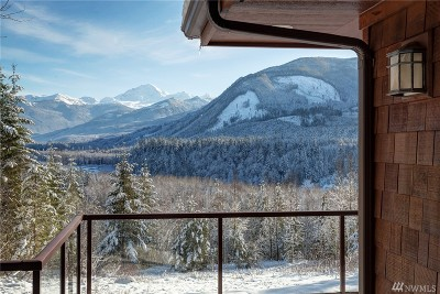 Deming Single Family Home For Sale: 8174 Mt Baker Hwy