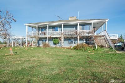 Single Family Home For Sale: 431 Burnt Ridge